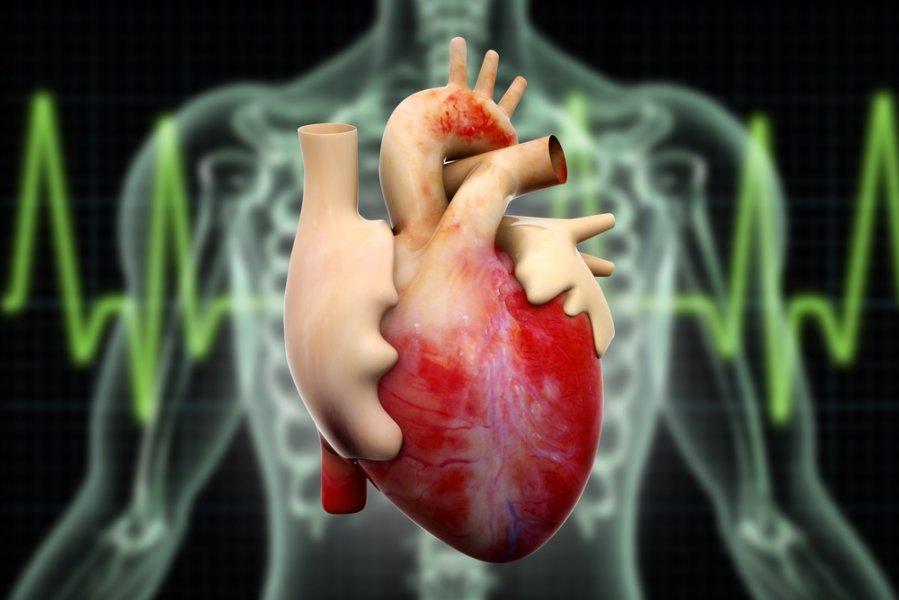 hipertenzija dešinėje ir kairėje spaudimas kiek kartų reikia matuoti kraujospūdį esant hipertenzijai