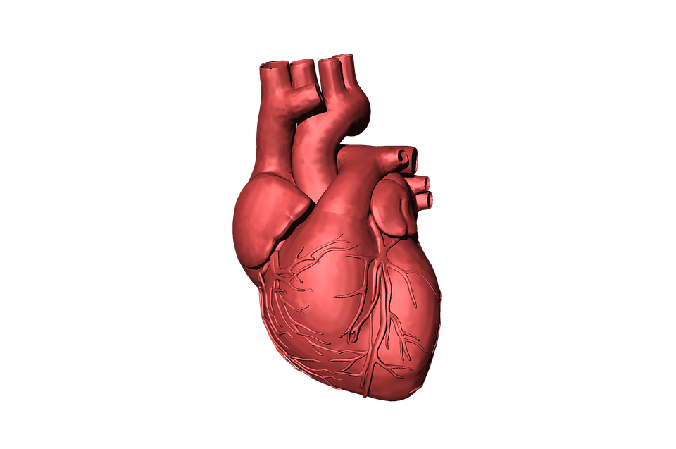 paprasti būdai pagerinti širdies sveikatą