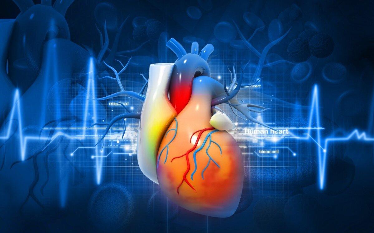EKG - paprasčiausias būdas rūpintis širdies sveikata - Aterosklerozė November
