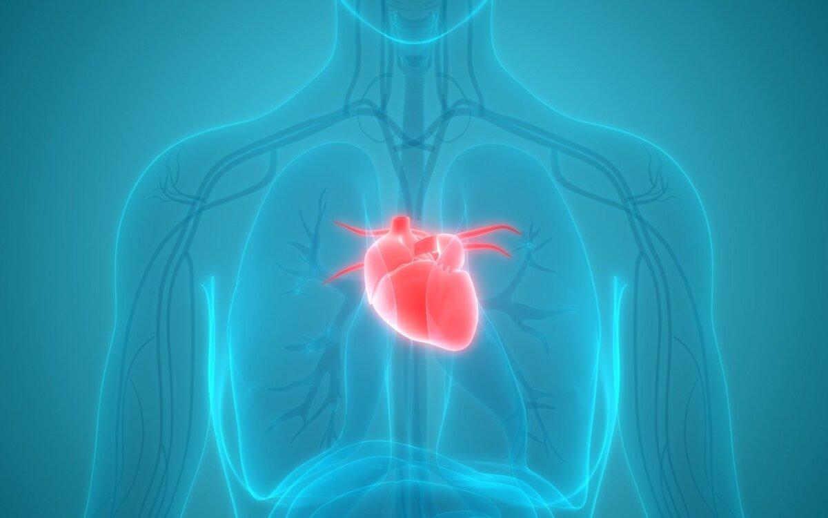 kūgio sveikatos širdies priežiūra