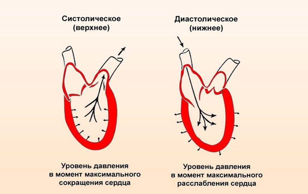 koks yra hipertenzijos kraujospūdis