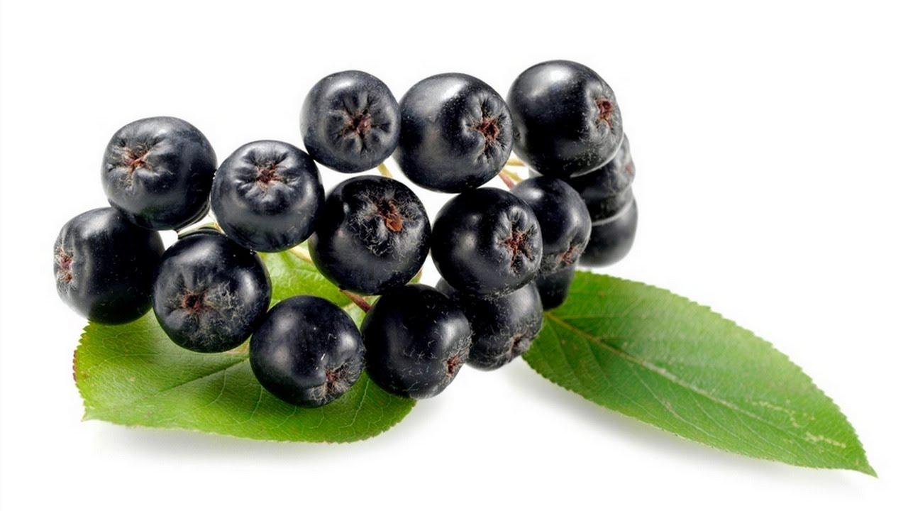 Chokeberry iš spaudimo - terapinės savybės hipertenzija ir nauda gydant ligas vaikams