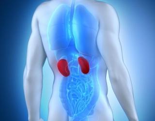 gydomasis nevalgymas gydant hipertenziją kas draudžiama sergant 1 laipsnio hipertenzija