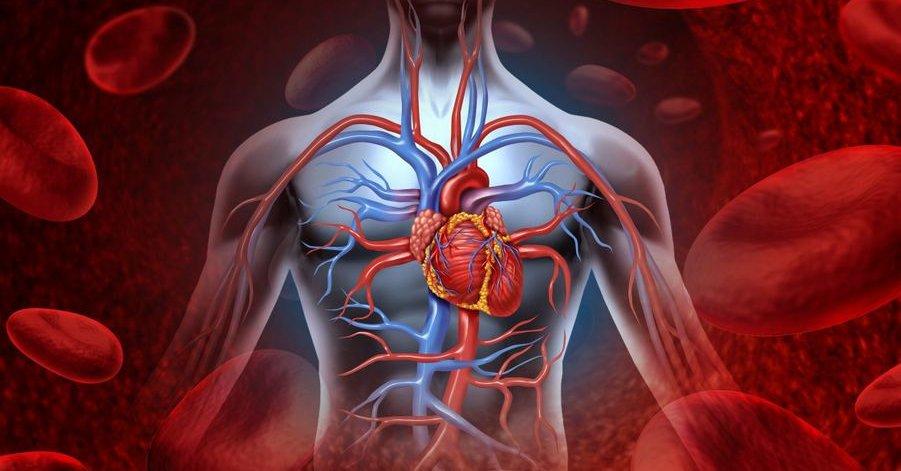 kaip pagerinti širdies sveikatą
