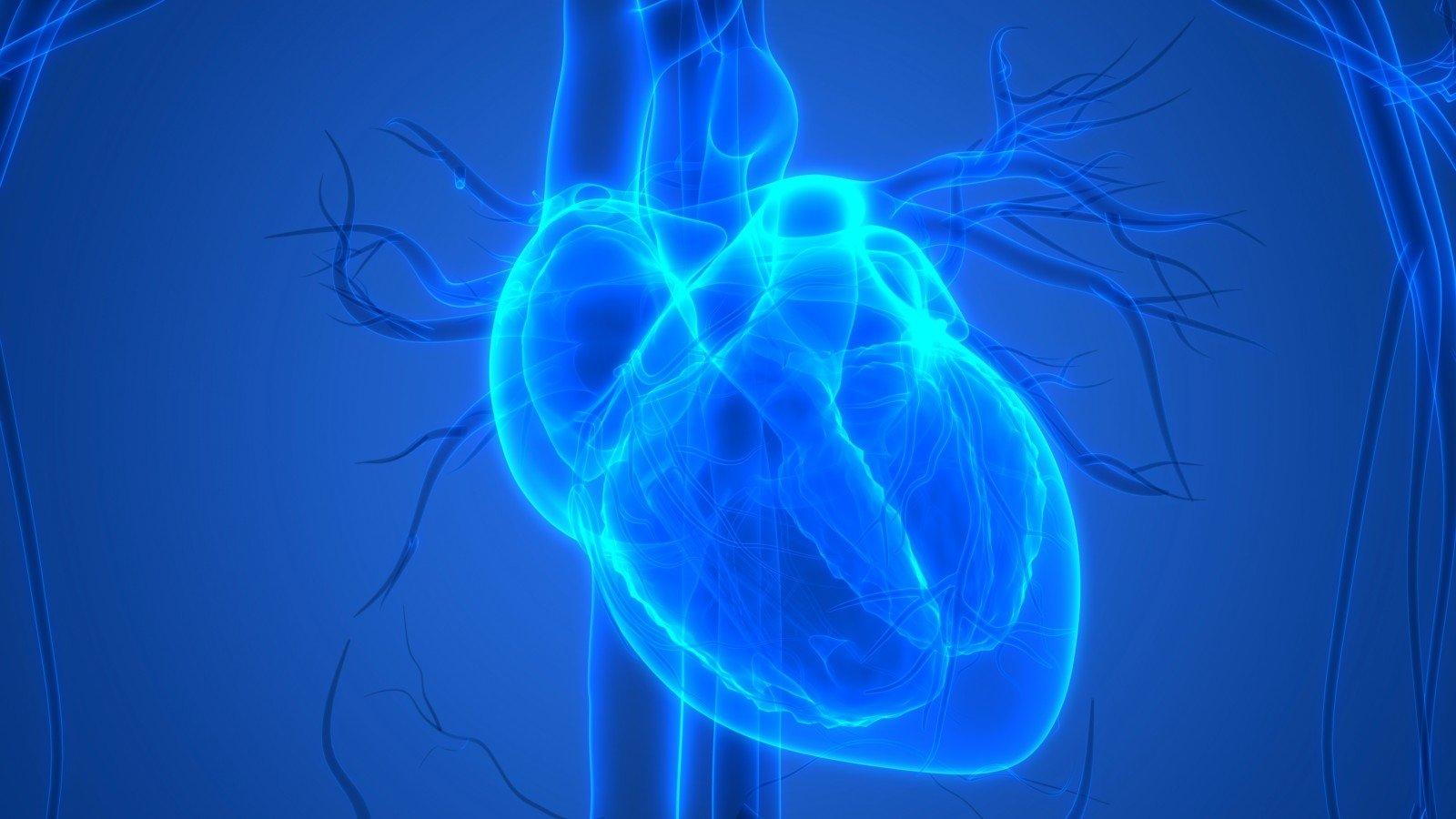 Širdis negali išsimušti iš ritmo