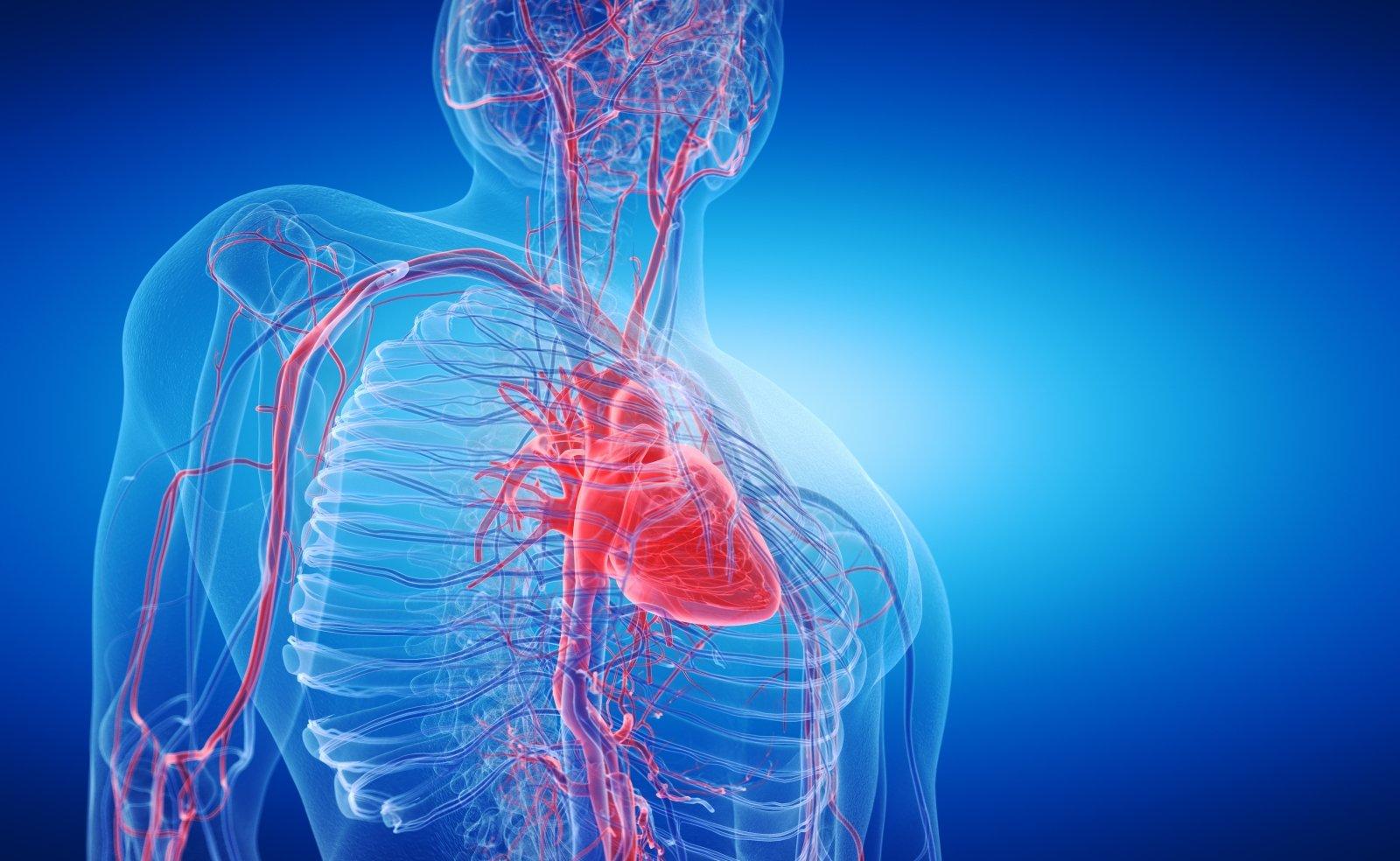 natūrali širdies sveikata