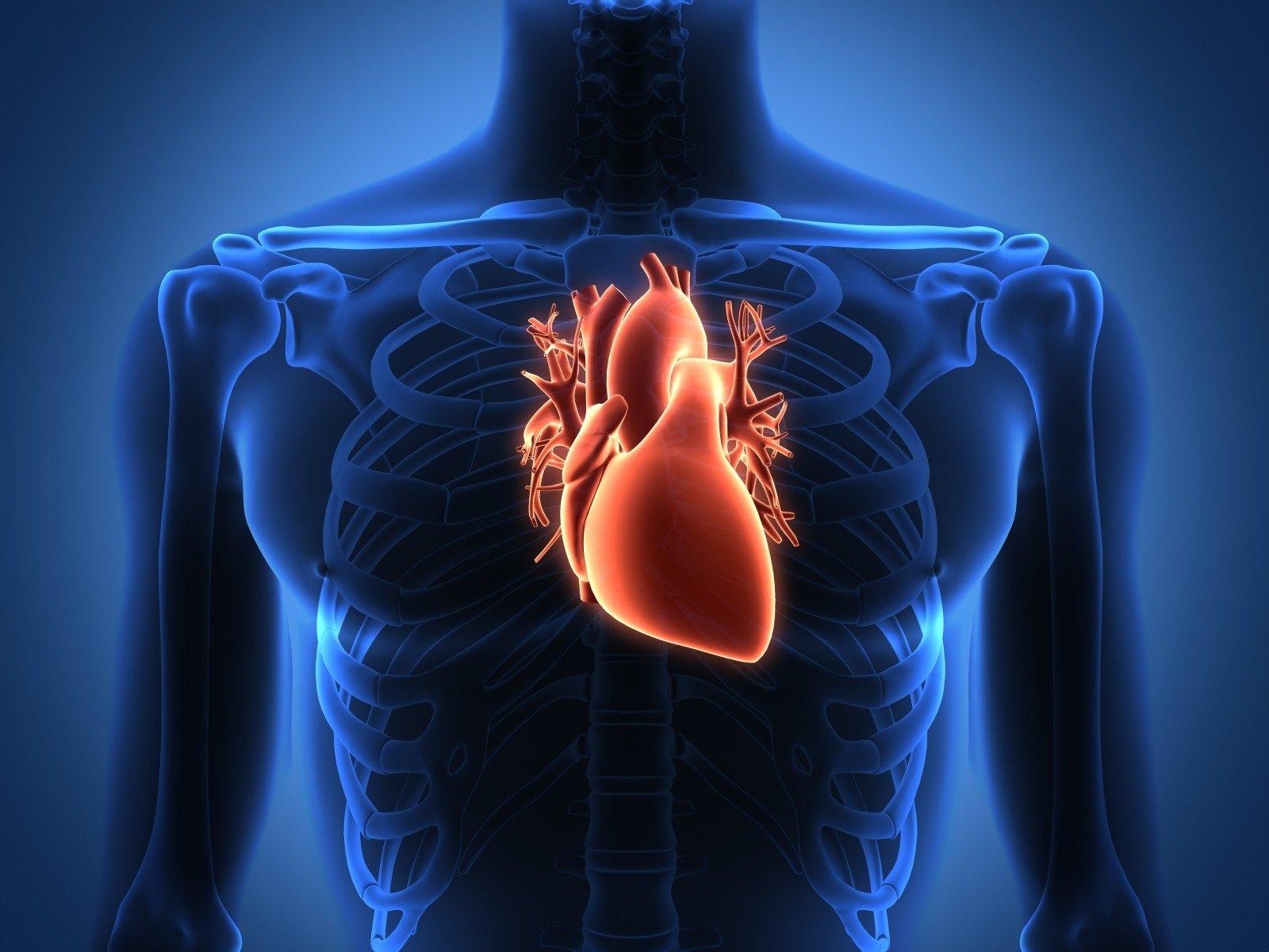 imbiero ir širdies sveikata malonesnė širdis namų sveikata