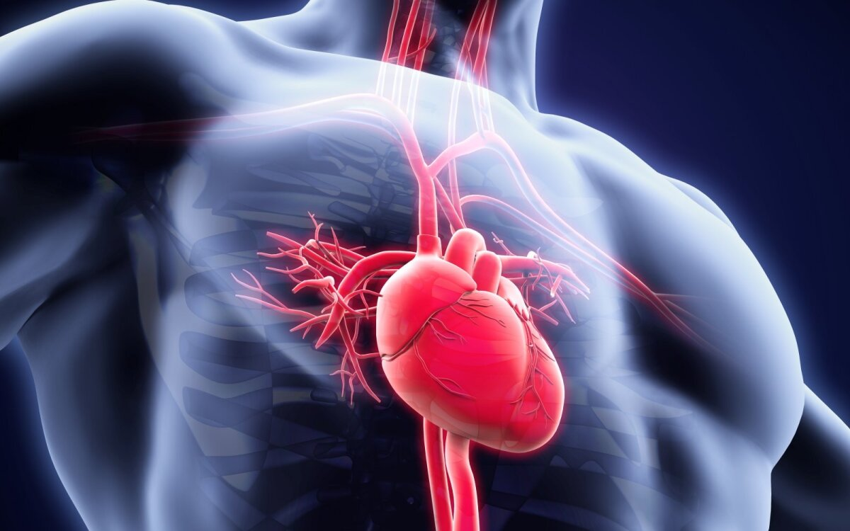 ar galima gerti širdies hipertenziją kuris diagnozuoja hipertenziją
