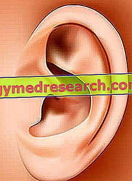 ausies taško hipertenzija