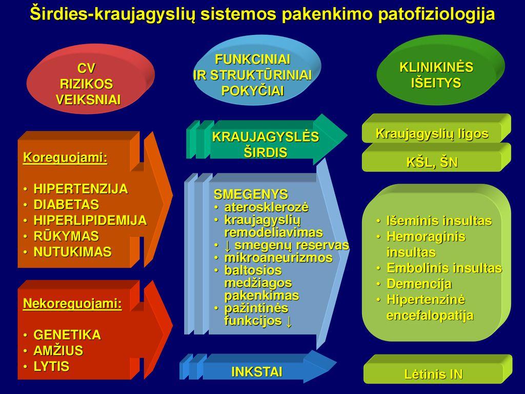 triada vaistų nuo hipertenzijos hipokinetinė hipertenzija