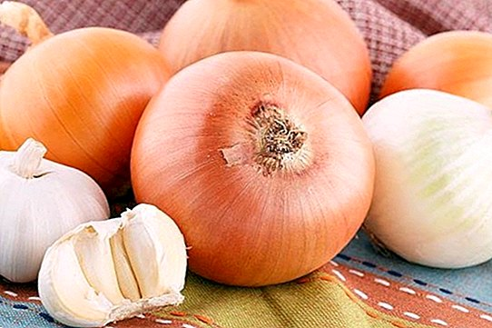 hipertenzija programoje yra puiku gyventi širdies sveikų sveikatos mėnesio receptų