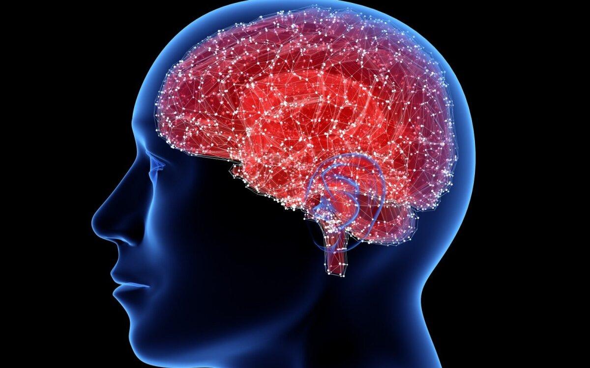 galvos smegenų hipertenzijos vaistai ortosifonas nuo hipertenzijos