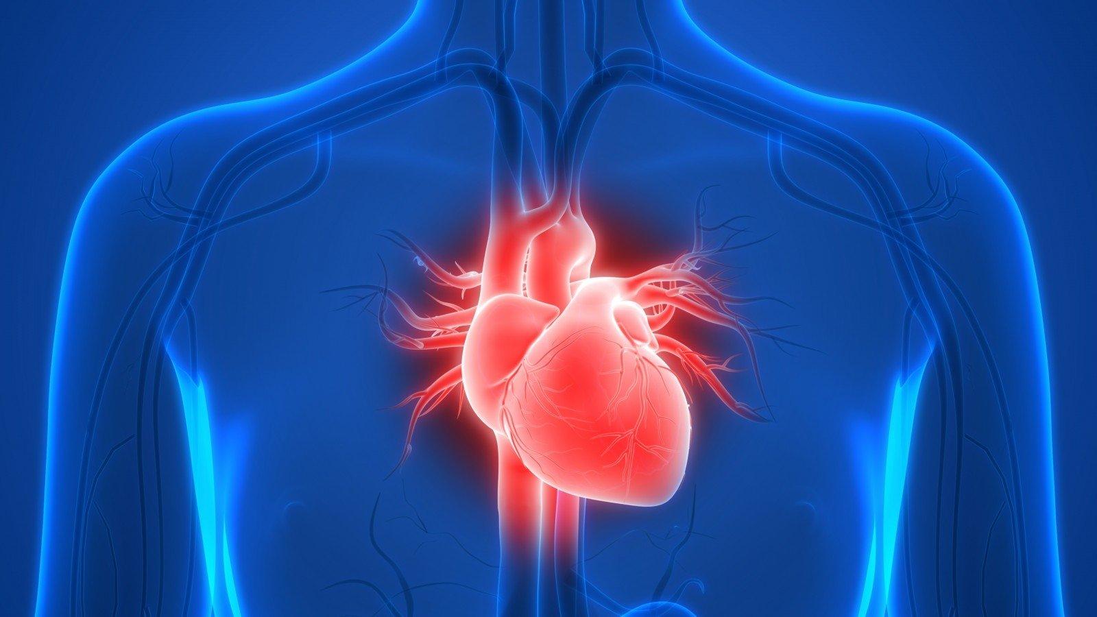 kraujas su hipertenzija