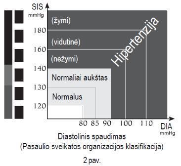 skubios pagalbos dėl hipertenzijos pavyzdys