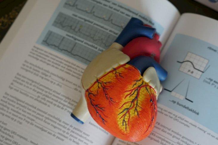 limfodrenažinis masažas esant hipertenzijai sergant hipertenzija, sumažinti galvos skausmą