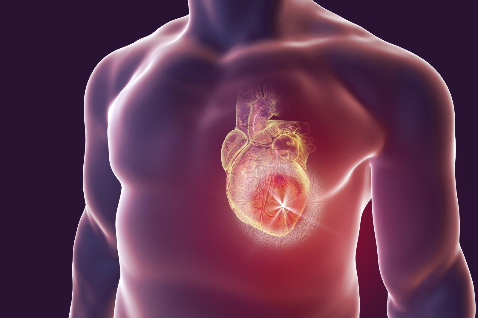 baltymai ir hipertenzija